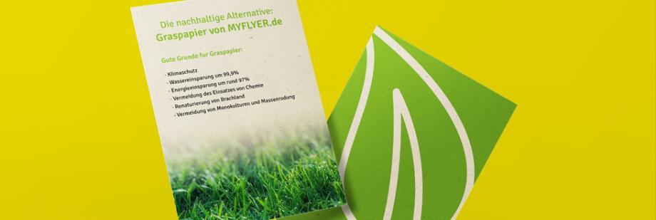 Graspapier – Die nachhaltige Alternative