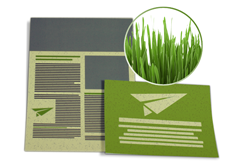 Flyer Graspapier