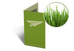 Parallelfalz Flyer Graspapier