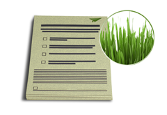 IMG: Blocks aus Graspapier Blocks aus Graspapier