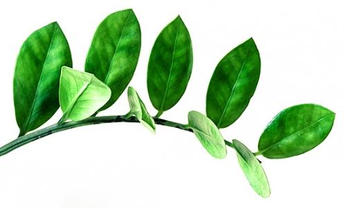 Umweltschutz - Zweig